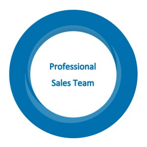 professional sales team